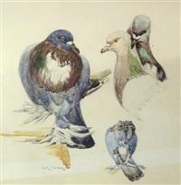 les pigeons by edouard marcel sandoz