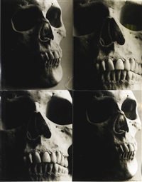 four skulls by christopher makos