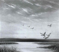 mallards rising, north essex coast marshes by thomas kennedy