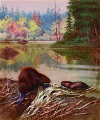 beavers at work (+ red fox hunting mice; 2 works) by walter a. weber