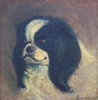 portrait d'un ami fidèle by leonardo gasser