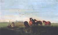 magyars tending horses by joseph wolfram