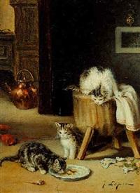 jeux de chatons by jos le roy