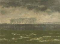 overstroomde meersen (high water at the meersen near river the leie) by albijn van der abeele