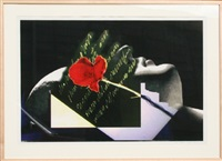 sleeping rose (from visual chemistry) by john waters