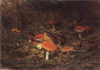 champignons by wilhelm christiaan constant bleckmann