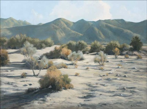 anderson wash by darwin duncan