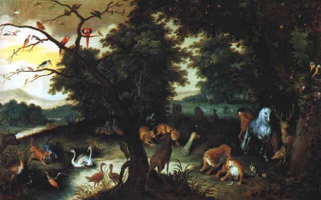 Das Paradies Der Tiere