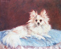 a papillon on a blue cushion by l. manouriez