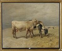 vaches au pré by henry schouten