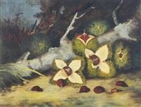 horse chesnuts by frederick s. batcheller