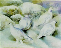 Ptarmigan in the snow, 1996–1996