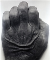 self portrait (back of hand) by john coplans