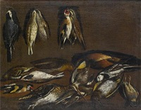 dead pied wagtails, goldfinches and other birds hanging on a wall by jacob van der kerckhoven