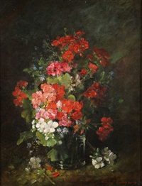 geraniums by michel aaron