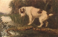 a terrier on a branch by arthur batt