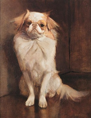 portrait of a japanese chin by samuel fulton