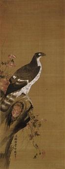 hawk on a branch by moriteru tsuruzawa