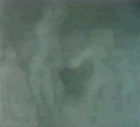 desnudos danzantes by antonio valdivieso