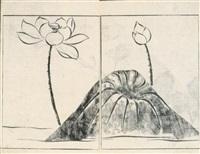 soken gafu soka-no-bu - dessins de soken, les fleurs by yamaguchi soken