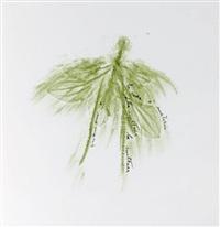 trentatre erbe (set of 33) by giuseppe penone