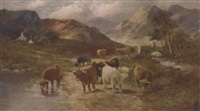 highland cattle watering by a. lewis