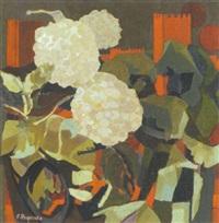 hortensien by primo pegoraro