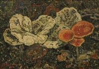 mushrooms by jan adam zandleven