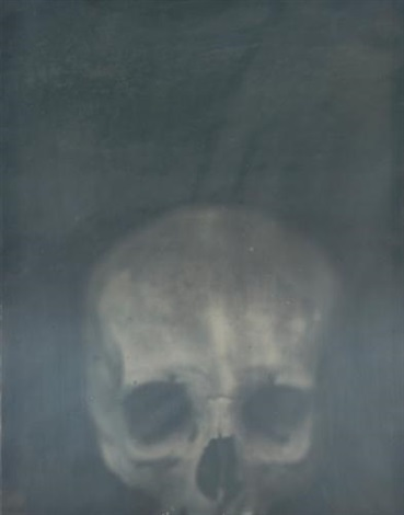 skull by adam fuss