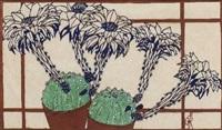blühende kakteen am fenster by paula maria (rossler) von goeschen