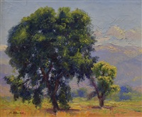 cottonwoods and the sangre de cristos by henry balink