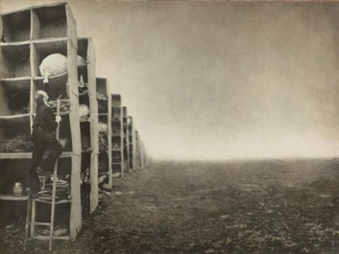 the collector from the architects brother series by robert shana parkeharrison