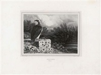 animals drawn on stone (+ cerf; 7 works) by newton (smith limbird) fielding