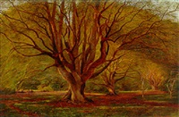 a beech wood by j. bedloe goddard