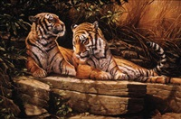 ever watchful - two tigers by michael jackson