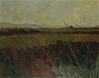 kerry landscape by grenville cottingham