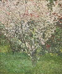 spring blossoms by john lennox