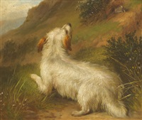 terrier and retrievers (pair) by george armfield