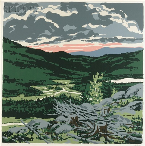 briggs meadow from landscapes by neil welliver
