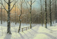 winter scenery from the marselisborg woods by wolmer zier
