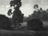 landscape with trees by leonard lester
