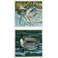 wood duck; loon (2 works) by neil welliver
