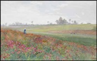woman in a field by frances anne hopkins
