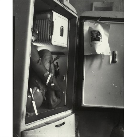 providence rhode island refrigerator by francesca woodman
