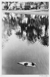 frogs on log by robert frank