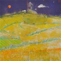 poppies, west france by david gordon hughes