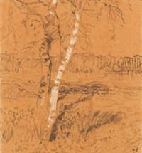 birken (worpswede) by hans am ende