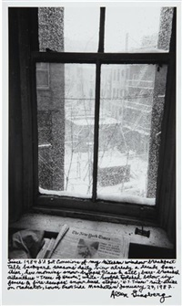 view out of my kitchen window, january 27 by allen ginsberg