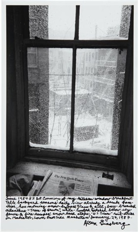 view out of my kitchen window january 27 by allen ginsberg