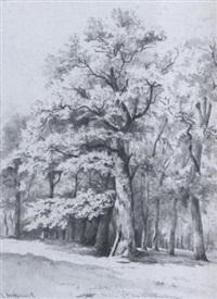 wooded landscape near haarlem by cornelis steffelaar